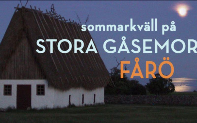 Artister 2017 på Gåsemora